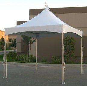 Canopy 10'x10' festival top (White)
